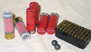 lead ammo examples
