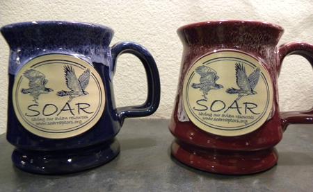 SOAR mug
