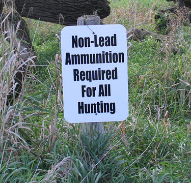 non-lead ammo required