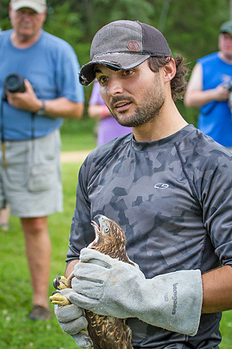 SOAR volunter Tyler holds a red-tailed hawk that is ready for release.