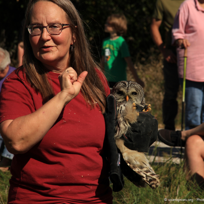 Kay carries one the two barred owls to be released.