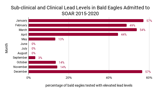 prevalence of elevated lead tests