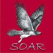 (c) Soarraptors.org